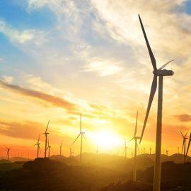 Waipipi Wind Farm